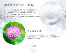 画像7: 【シークレットセール】PPTスカルプローション5.5 150ml (7)